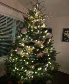 Cristmas Tree Pollard